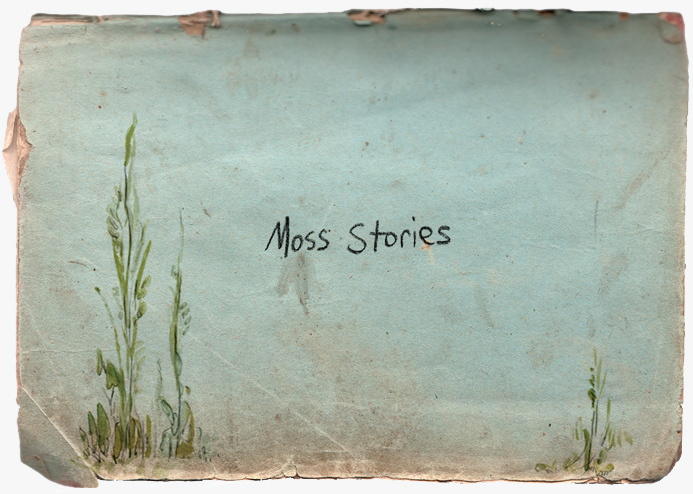 Moss-Stories-Home