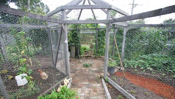 StrongBuild vegie structure